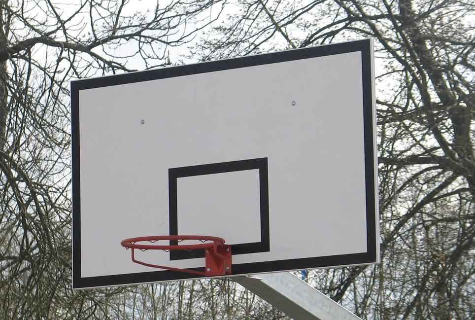panneau de basket 120x90cm. Black Bedroom Furniture Sets. Home Design Ideas